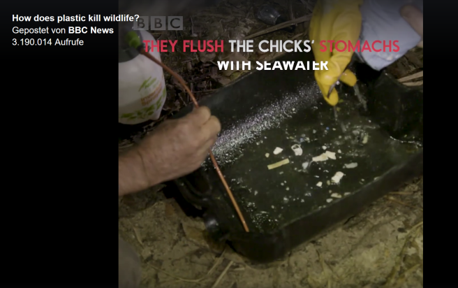 bbc_how-does-plastic-kill-wildlife2b ©bbc