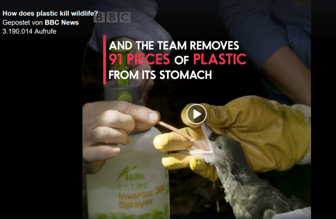 bbc_how-does-plastic-kill-wildlife3 ©bbc
